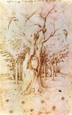 Сова в гнилом дереве, слушающий лес и смотрящие поля Иеронима Босха (Hieronymus Bosch)