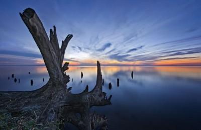 Динозаврик - Украина. Киевское море (водохранилище).