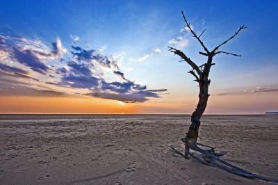 На пустынном берегу - Украина. Киевское море (водохранилище).